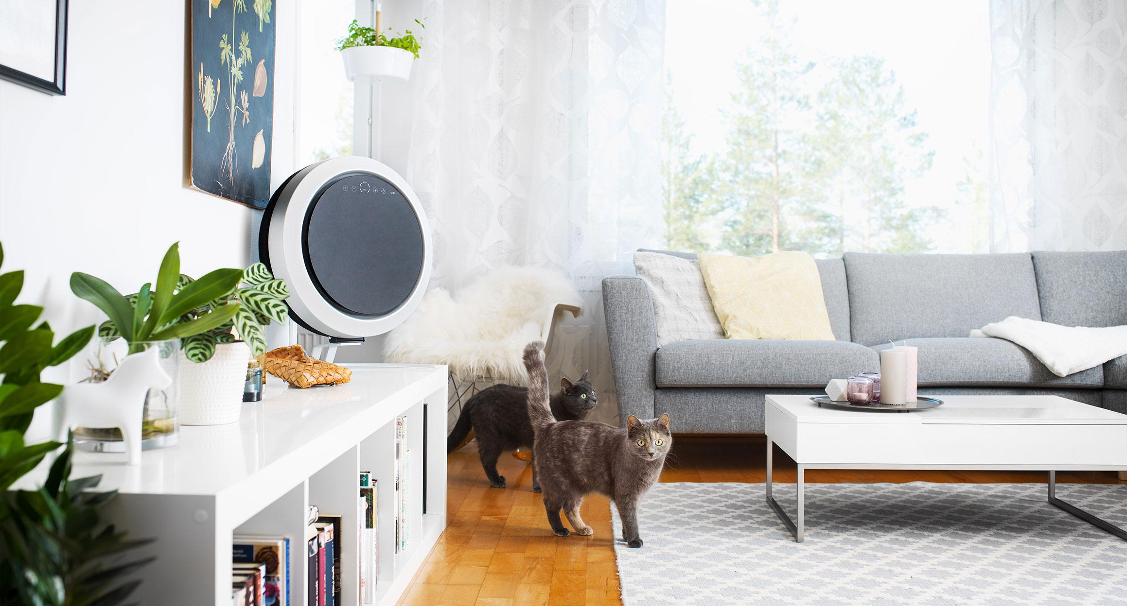 Uniq ilmanpuhdistin ja kissat